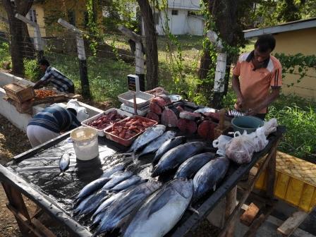 Fischhändler