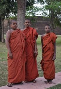 Drei junge Mönche am heiligen Baum