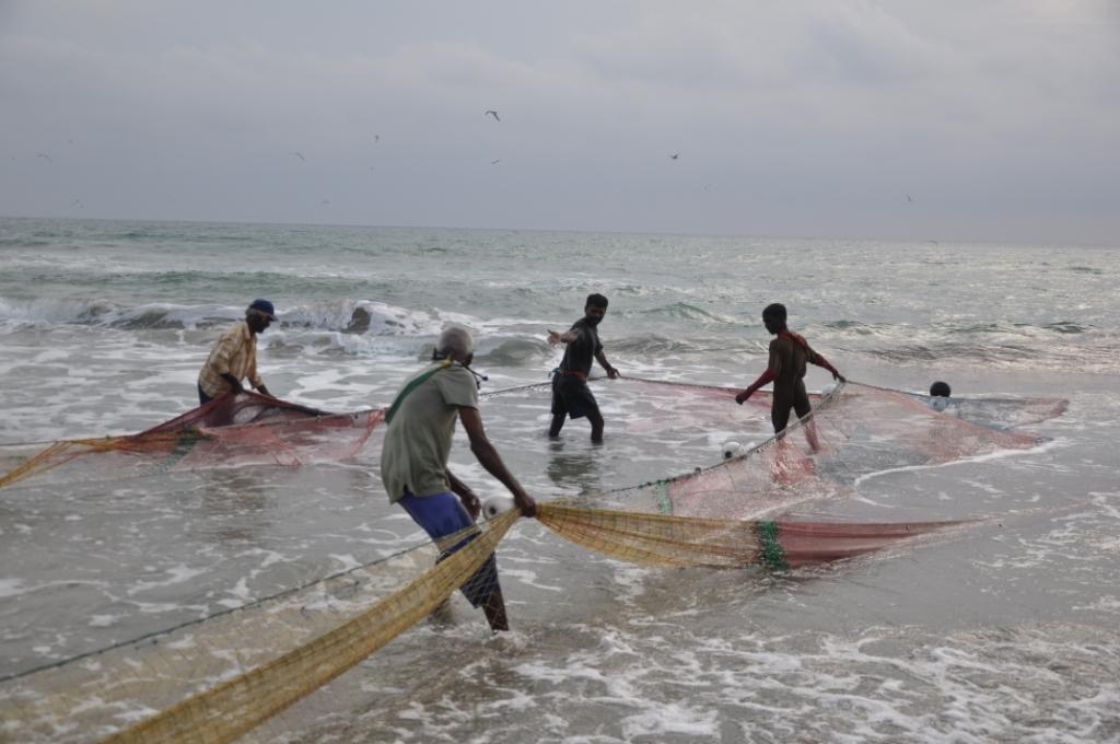 Fischer ziehen das eigentliche Netz ein